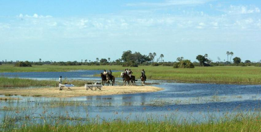 Reitsafari & Reiturlaub im Okavango Delta