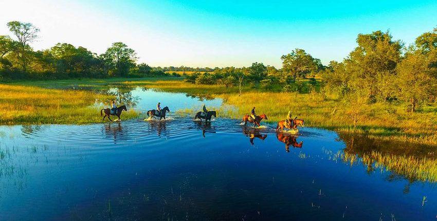 Safari zu Pferd, zu Fuss & im Kanu im Selinda Reserve
