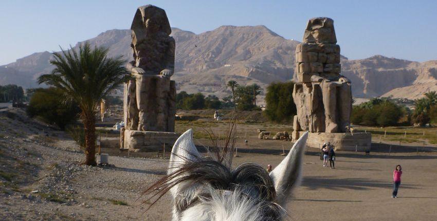 Reiturlaub in Luxor und am Roten Meer