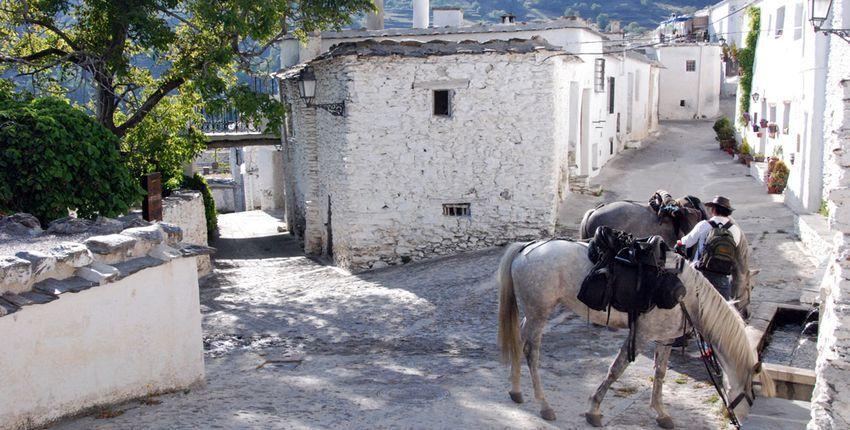Wanderritt La Alpujarra