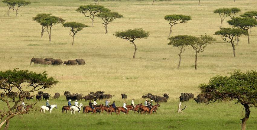 Reitsafari Maasai Mara Conservancies