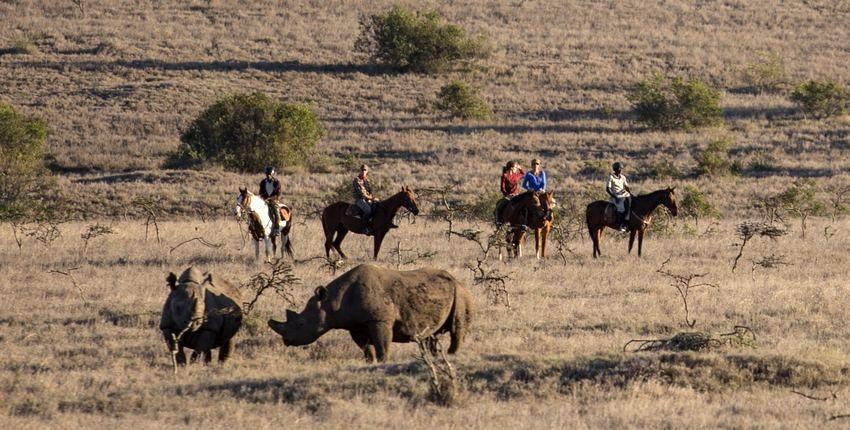 Reiturlaub Borana - Kenia
