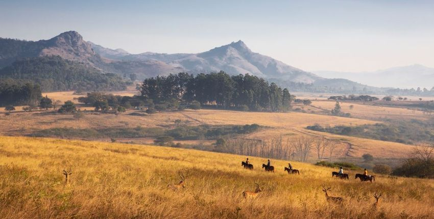 Eswatini - Wanderritt im Mlilwande Reservat