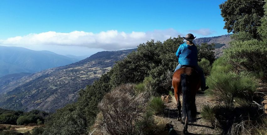 Wanderritte in der Sierra Nevada