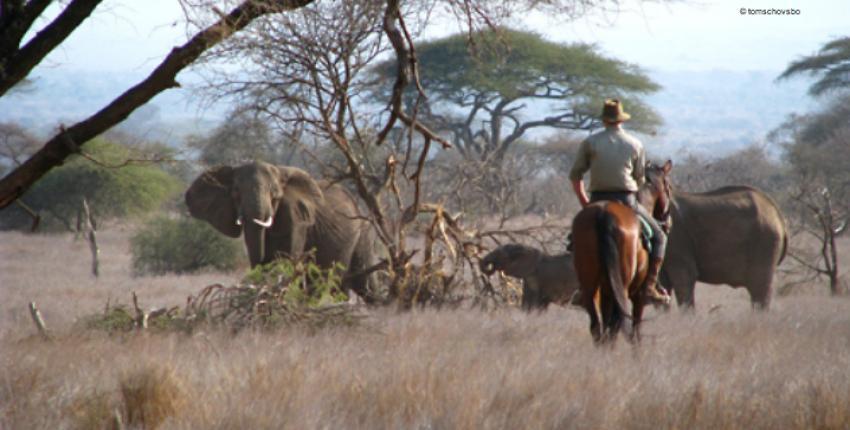 Tansania - in den Ausläufern des Kilimanjaro
