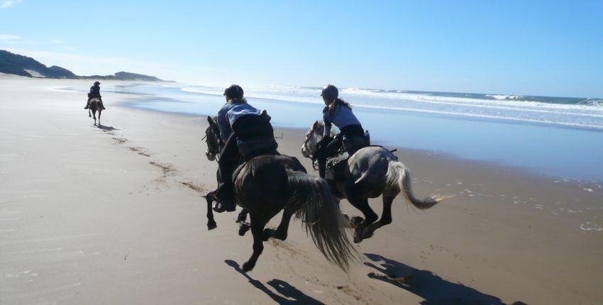 Sonderangebote für Reiter Reisen & Reiturlaub