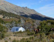 XAndes - Zelt mit Pferd