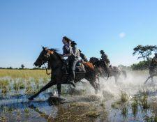Galopp im Okavango Delta