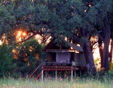 Mokolwane Camp