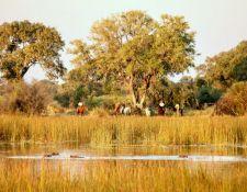 Flusspferde und Reiter an einer Lagune im Delta