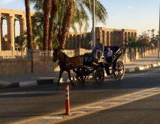Kutsdhfahr in Luxor