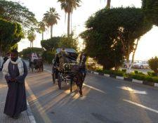 Kutsche auf der Corniche