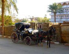 Typische Kutsche in Luxor