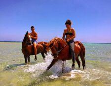 Spass im Meer