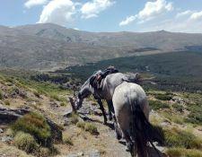 Sierra Nevada Nordseite