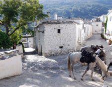 Pferdetränke in Trevelez