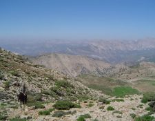 Lorestan-KuhKala-Pass