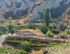 Grüne Landschaft in Kappadokien