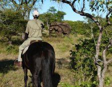 Simbabwe - Reitsafari Victoria Falls