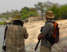 Fußpirsch im Zambezi National Park