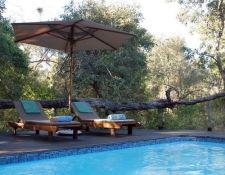 Pool der Royal Tree Lodge